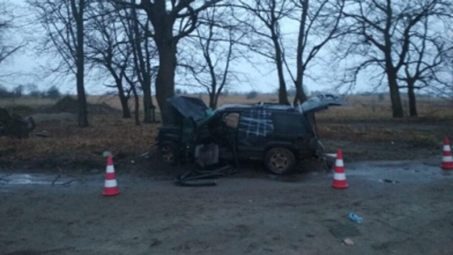 В Светлогорском районе Jeep врезался в дерево, погиб пассажир  - Новости Калининграда | Фото: пресс-служба регионального УМВД