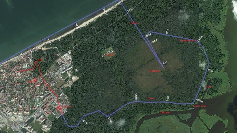 Свиное болото, Чкаловский лес,  мыс Таран: четыре пеших маршрута по Калининградской области - Новости Калининграда