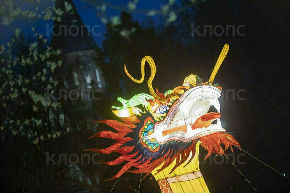 В Калининграде открылся Фестиваль гигантских китайских фонарей (фоторепортаж) - Новости Калининграда
