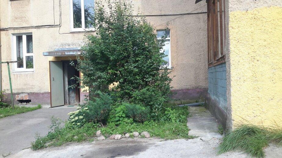 Дом, с которого упала штукатурка | Фото:  Софья Кормаева