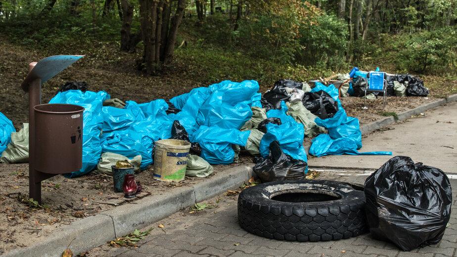 На берегу в Зеленоградске собрали 103 мешка мусора общим весом почти 900 кг - Новости Калининграда | Фото предоставлено организаторами акции
