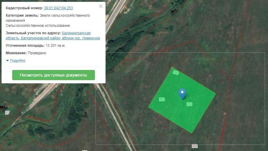 В Нивенском 13 га сельхозземель перевели под калийно-магниевый рудник - Новости Калининграда | Скриншот кадастровой карты