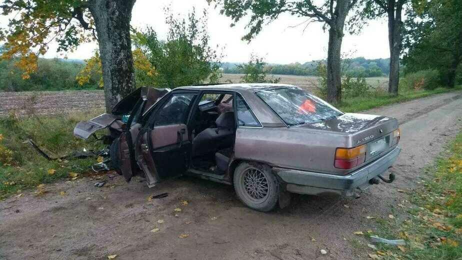 В Озёрском районе Audi врезался в дерево, пострадали два человека (фото) - Новости Калининграда | Фото: очевидец