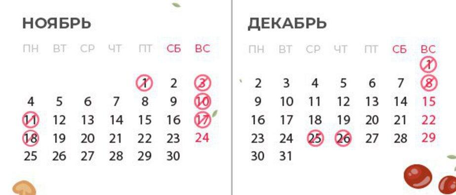Из-за Дня всех святых в Польше закроют магазины в пятницу - Новости Калининграда