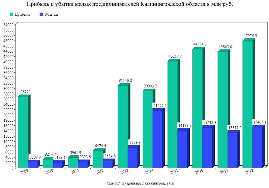 Калининградстат: прибыль малых предпринимателей области за десять лет выросла почти в 18 раз - Новости Калининграда