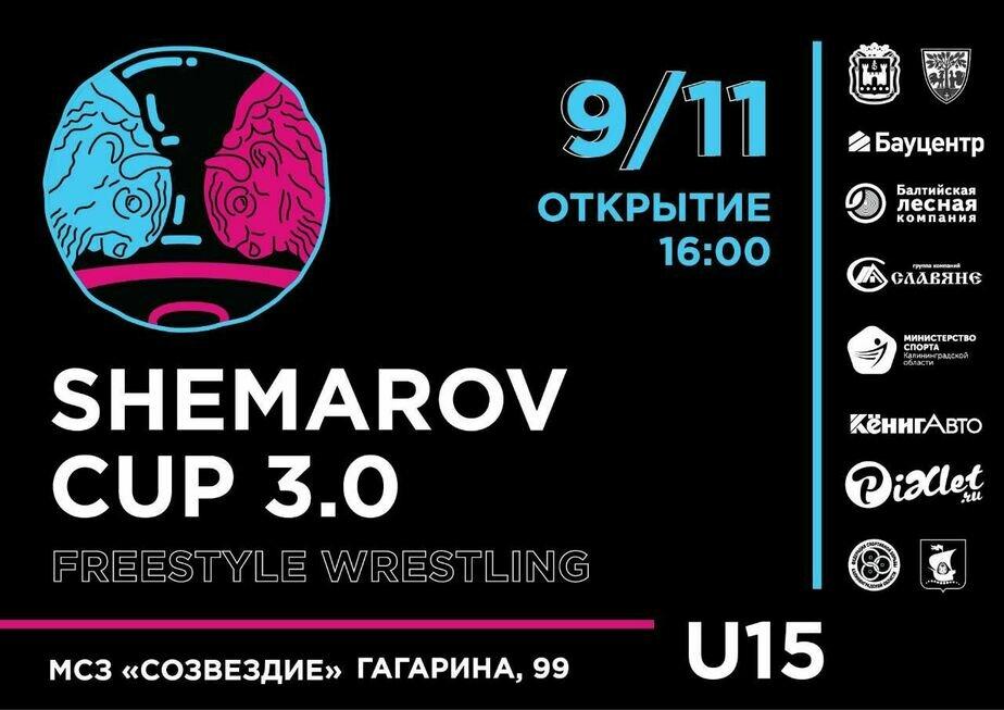 9 ноября в Калининграде состоятся престижные соревнования по борьбе вольным стилем - Новости Калининграда