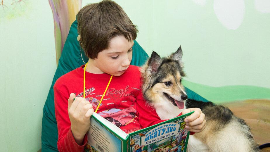 В Калининграде собирают деньги на корм для собак, помогающих детям с нарушением слуха - Новости Калининграда | Фото: Ирина Певнева