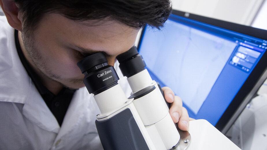 """Российские учёные нашли способ заглянуть внутрь наноматериалов - Новости Калининграда   Архив """"Клопс"""""""