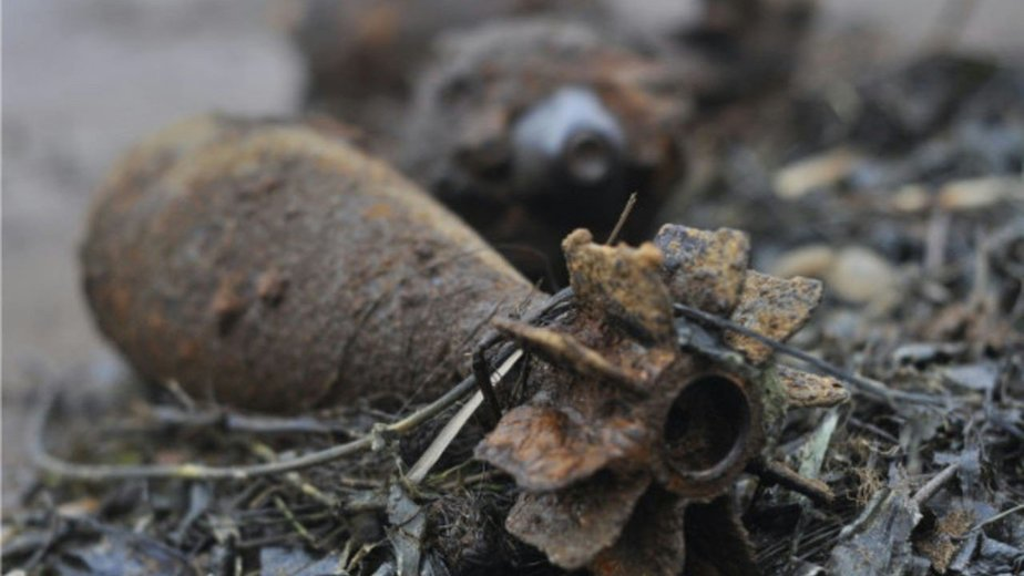 Сапёры Балтфлота обезвредили найденные в чкаловском лесу боеприпасы - Новости Калининграда | Фото: пресс-служба ЗВО по Балтийскому флоту