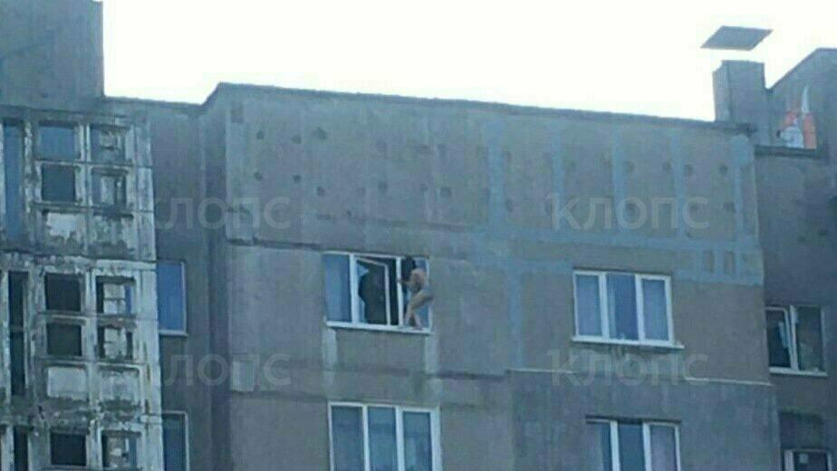Источник: 23-летняя калининградка вылезла на подоконник десятого этажа из-за ссоры с мужем - Новости Калининграда   Фото очевидца