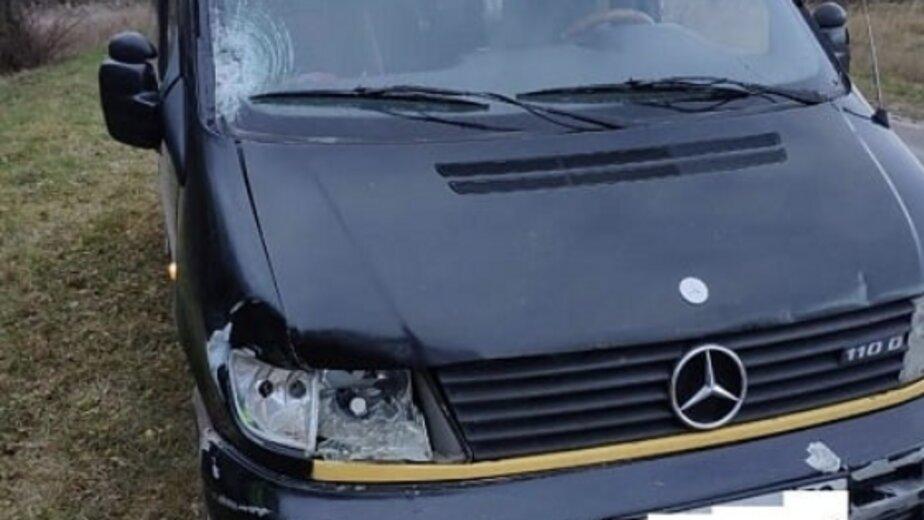 В Краснознаменском районе Mercedes насмерть сбил 65-летнюю женщину - Новости Калининграда | Фото: пресс-служба УМВД России по Калининградской области