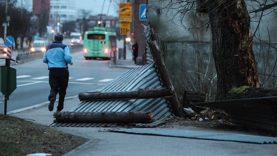 """В Калининграде вечером в четверг ветер усилится до 15,5 м/с - Новости Калининграда   Архив """"Клопс"""""""