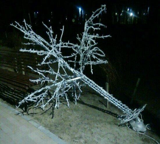 В Парке пяти чувств Гурьевска неизвестные сломали светящееся дерево (фото) - Новости Калининграда   Фото: Марина Ладонкина