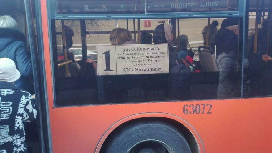 Сам себе контролёр: в Калининграде турист уехал на автобусе не туда из-за неправильной информации на табло - Новости Калининграда | Фото: очевидец
