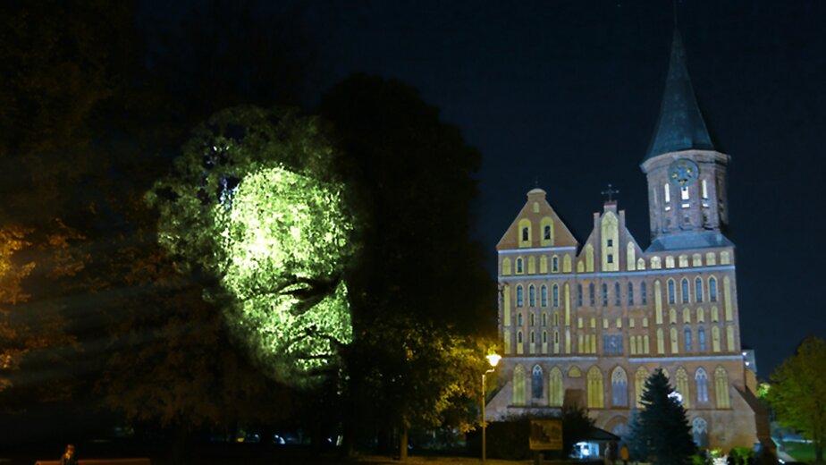В Калининграде появится световая инсталляция с портретом Канта   - Новости Калининграда | Эскиз с сайта правительства Калининградской области