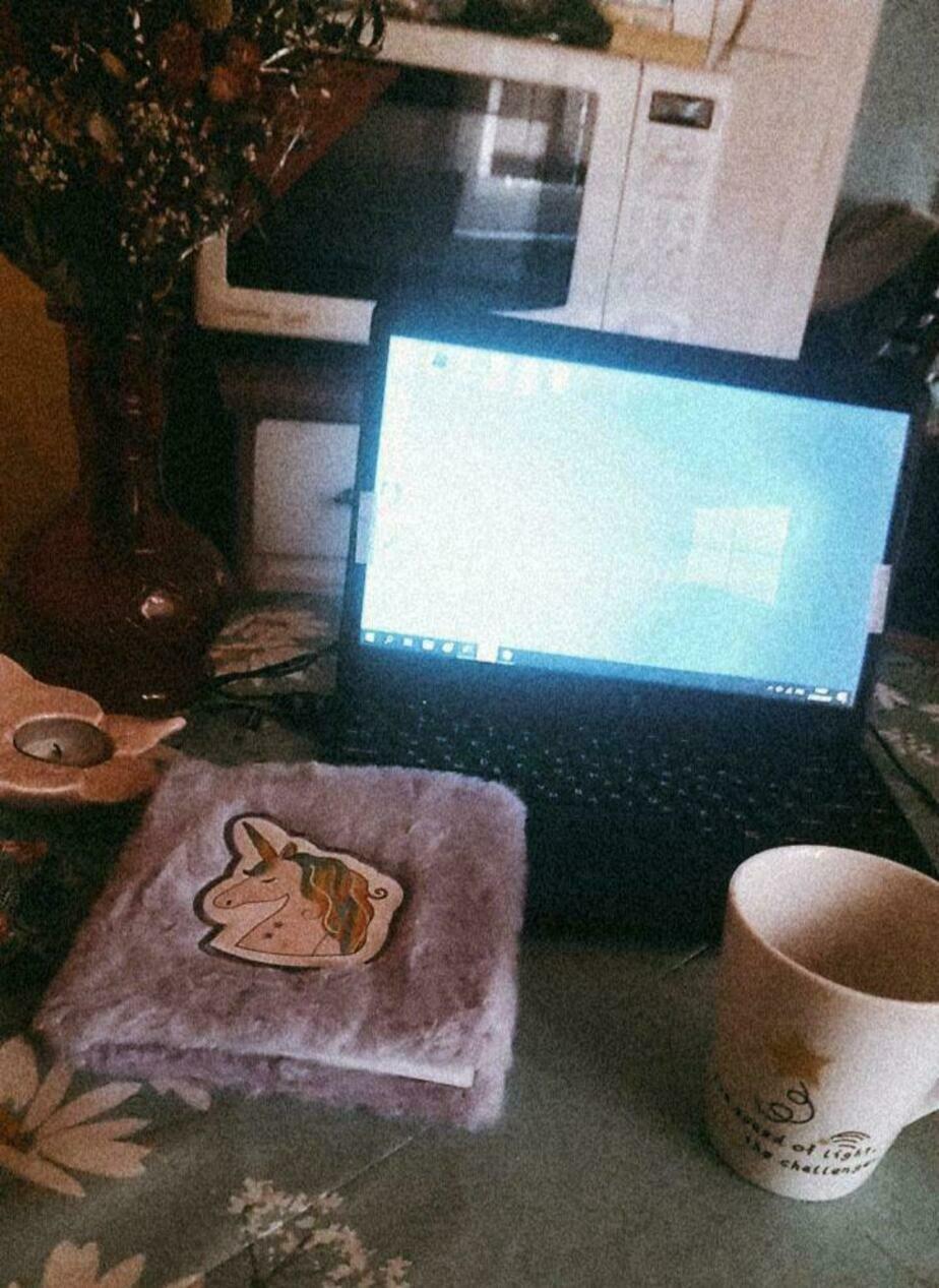 "Теперь все дома: как редакция ""Клопс"" живёт на удалёнке - Новости Калининграда | Фото: Надежда Маркова"