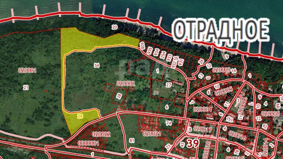 В Светлогорске на аукцион выставили почти 32 га земли - Новости Калининграда | Скриншот кадастровой карты