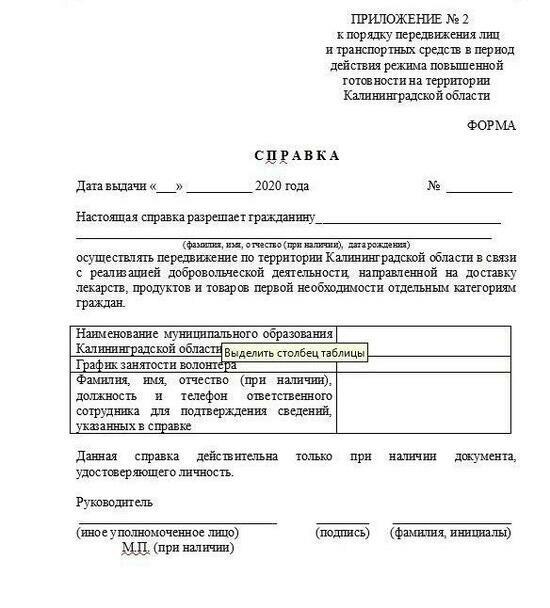 Власти региона показали шаблон справки с работы для жителей области - Новости Калининграда