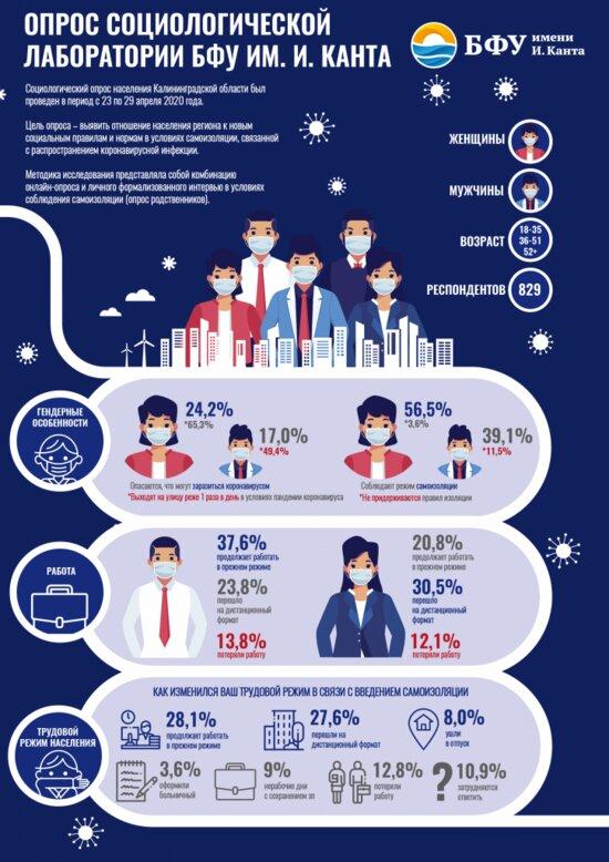 Опрос: почти 13% респондентов потеряли работу после введения самоизоляции - Новости Калининграда