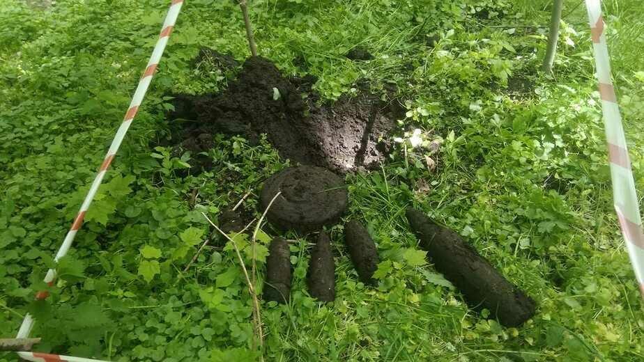 На территории Калининградского зоопарка нашли несколько снарядов времён войны (фото) - Новости Калининграда | Фото: Светлана Соколова / Facebook