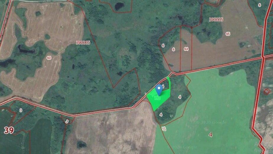 В Калининградской области построят завод по производству мясо-костной муки - Новости Калининграда   Скриншот кадастровой карты