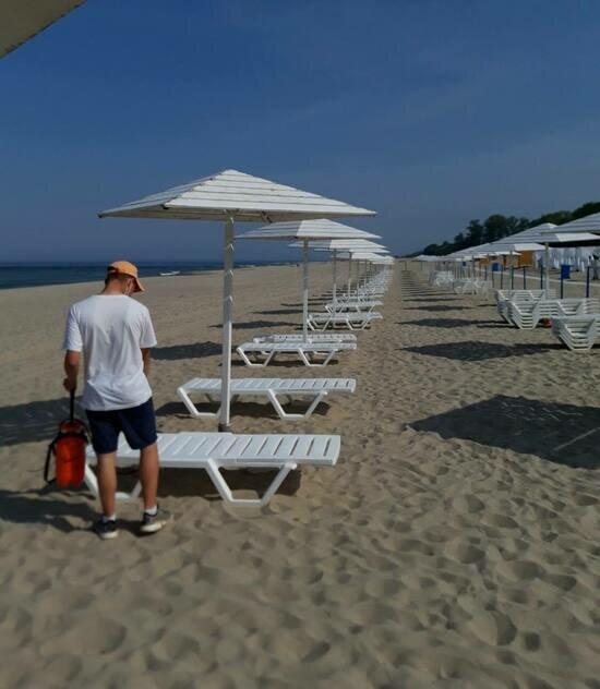 В Янтарном назвали стоимость аренды лежаков на пляже - Новости Калининграда | Фото: Алексей Заливатский / Facebook