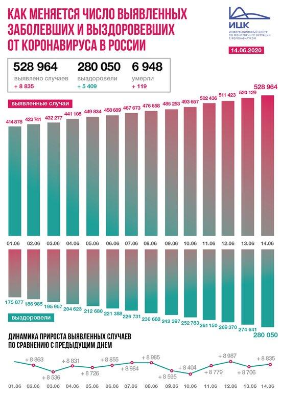 В России коронавирус подтвердился у 8 835 человек за сутки - Новости Калининграда | Изображение: Информационный центр по мониторингу ситуации с коронавирусом
