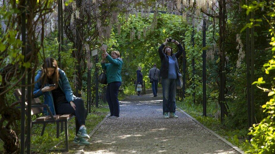 """Ботанический сад в Калининграде закроют на шесть дней, чтобы выдать выпускникам БФУ дипломы - Новости Калининграда   Архив """"Клопс"""""""