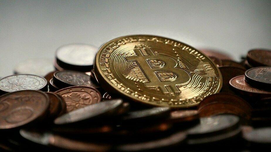 Как выбрать биржу и кошелёк для криптовалют новичку - Новости Калининграда