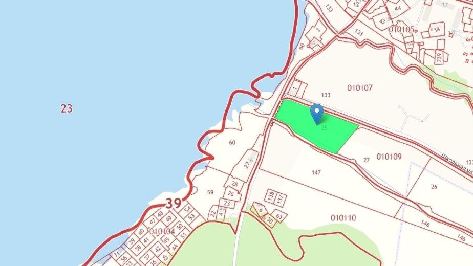 В Ладушкине планируют построить парк миниатюр - Новости Калининграда | Скриншот кадастровой карты