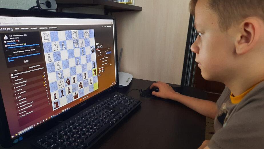 Калининградские шахматисты победили в международном дистанционном турнире - Новости Калининграда | Фото: пресс-служба правительства Калининградской области