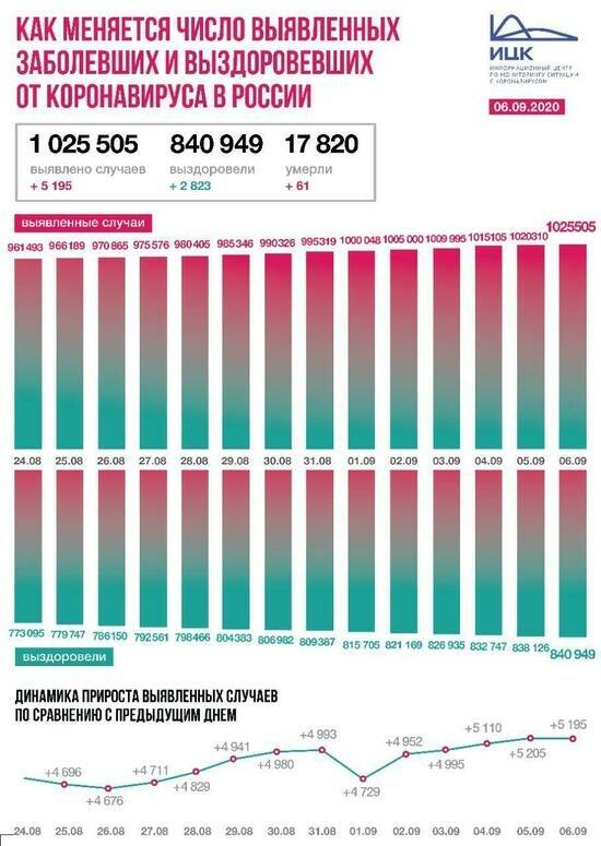 В Калининградской области выявили 20 случаев COVID-19 за сутки - Новости Калининграда | Изображение: Информационный центр по мониторингу ситуации с коронавирусом