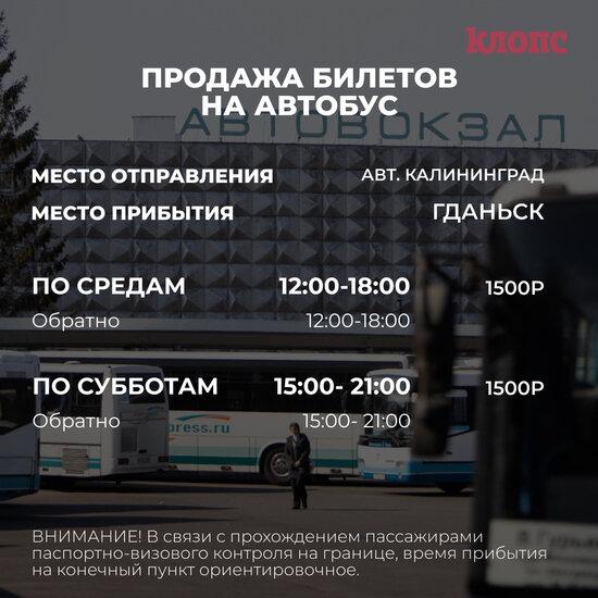 Из Калининграда в Гданьск пустят ещё один автобус - Новости Калининграда