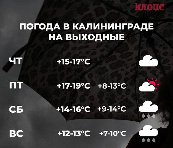 Синоптики пообещали дождливые выходные в Калининграде  - Новости Калининграда