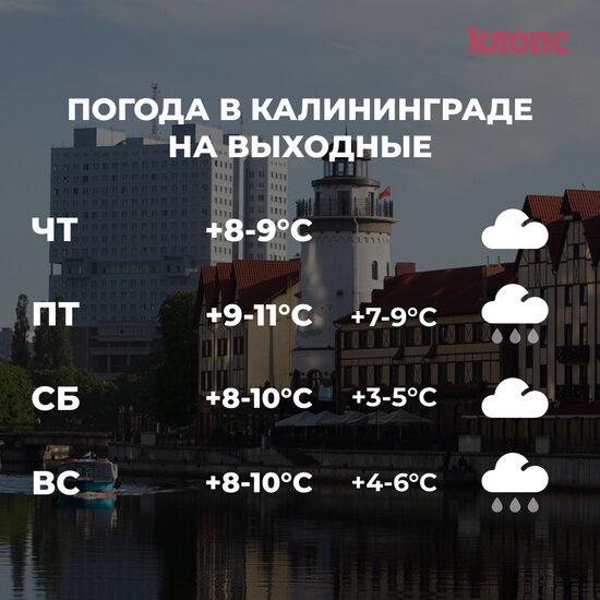 Калининградцам обещают дождливые и пасмурные выходные - Новости Калининграда