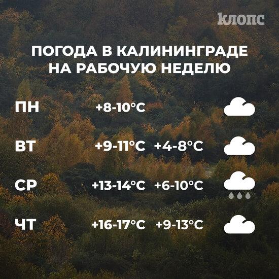 Синоптики рассказали о погоде в Калининграде на рабочую неделю - Новости Калининграда