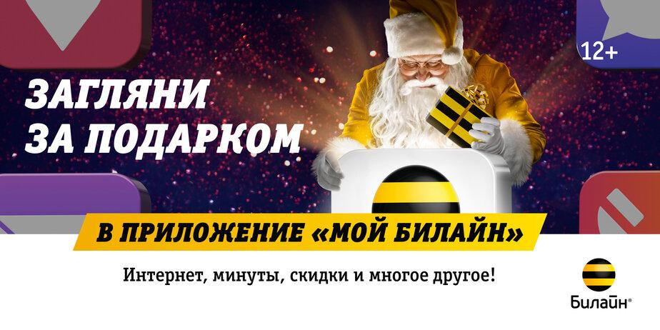"""Новогодние подарки в """"Моём Билайне"""": интернет, минуты, скидки и многое другое - Новости Калининграда"""