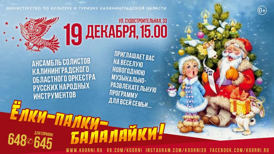 """""""Ёлки-палки-балалайки"""" — праздник музыки для всей семьи - Новости Калининграда"""