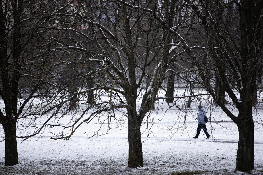 Климатолог рассказал, какими будут январь и февраль в Калининграде - Новости Калининграда | Фото: Александр Подгорчук