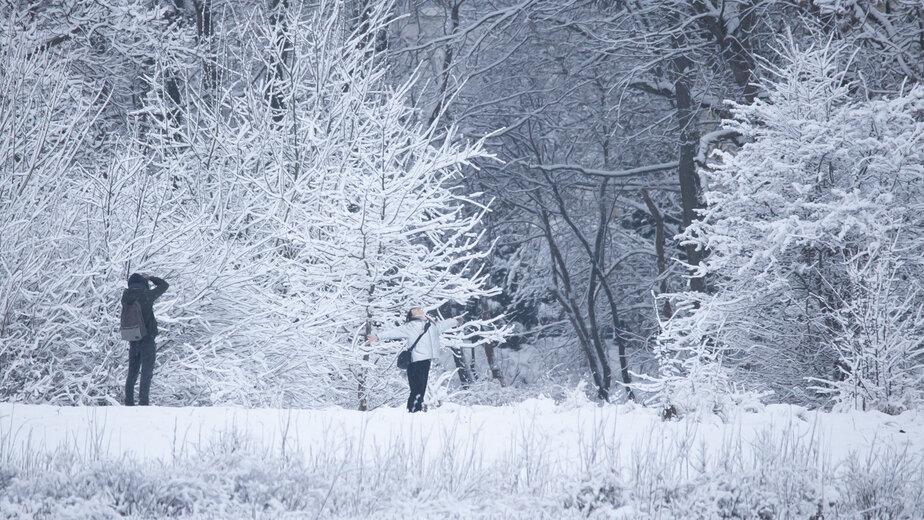 Гидрометцентр: в ночь на воскресенье в Калининграде ожидаются морозы до -20 градусов