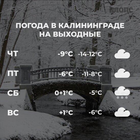 Синоптики рассказали о погоде в Калининграде на выходные - Новости Калининграда