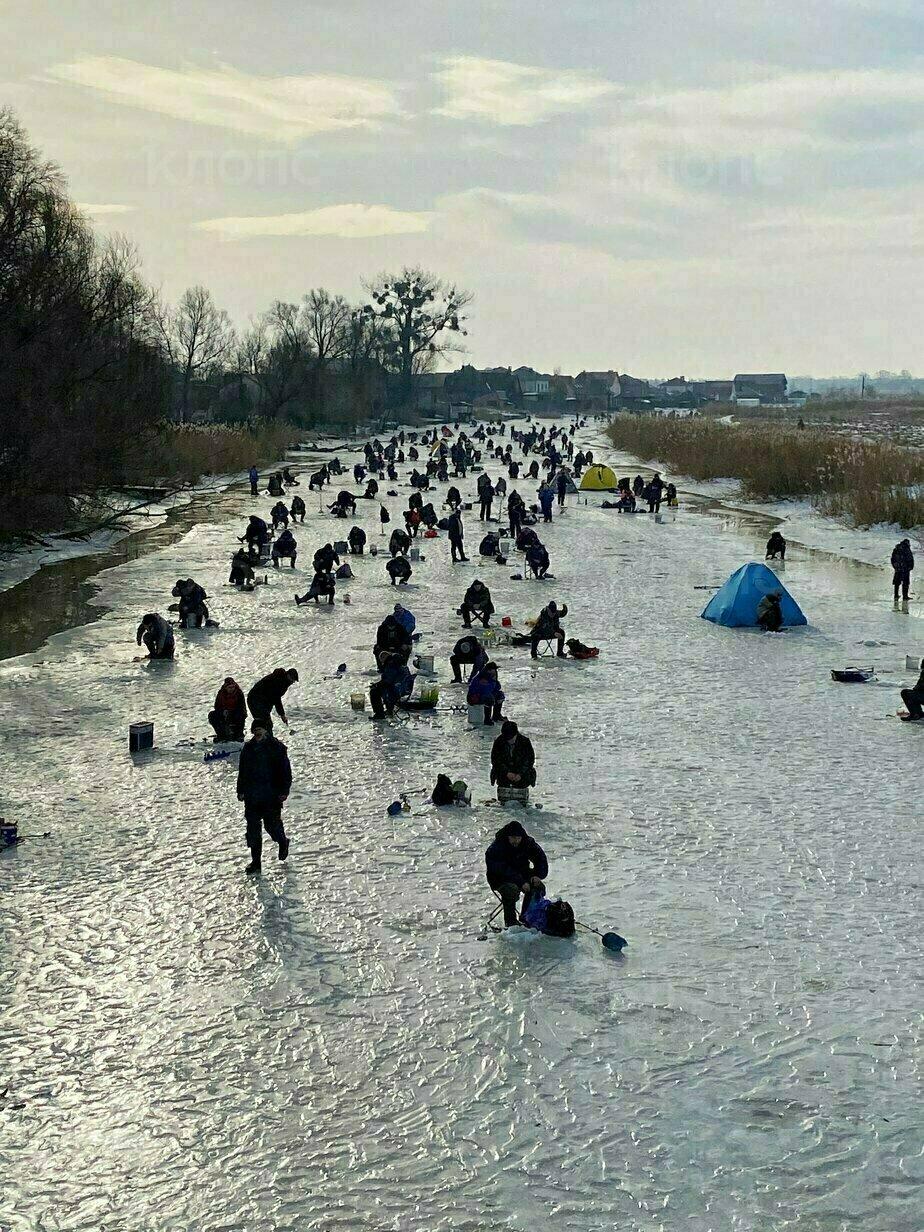 Фото дня: Утро на реке Прохладной - Новости Калининграда   Фото: Александр Подгорчук