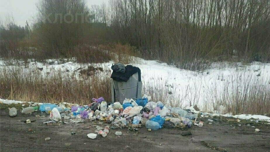 У калининградских дальнобойщиков снова проблемы на таможне - Новости Калининграда | Фото: очевидец