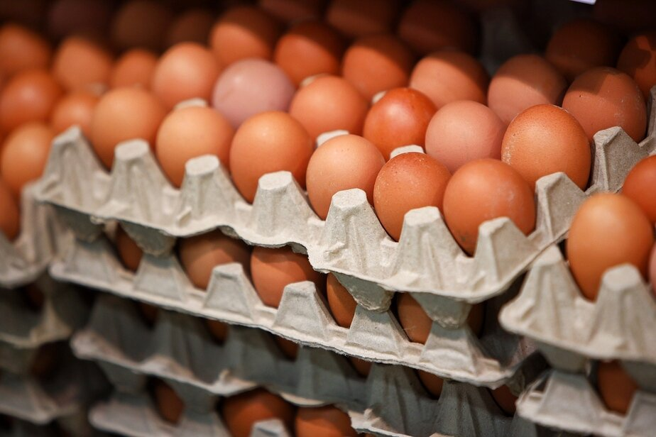 Заграничное зерно и ажиотаж: производители и ретейлеры рассказали, почему в Калининграде дорожают яйца - Новости Калининграда