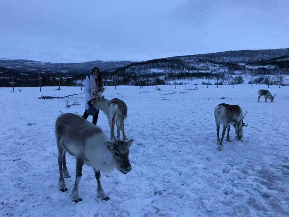 Финское турагентство отправляло девушку на работу в Норвегии | Фото: Даяна Атажанова