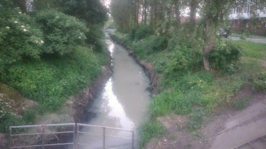 «Сбрасывают канализацию»: в минэкологии нашли причины загрязнения реки Лесной - Новости Калининграда | Фото: Архив «Клопс»