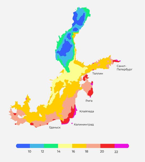 В Гидрометцентре назвали температуру воды в Балтике у берегов Калининградской области - Новости Калининграда
