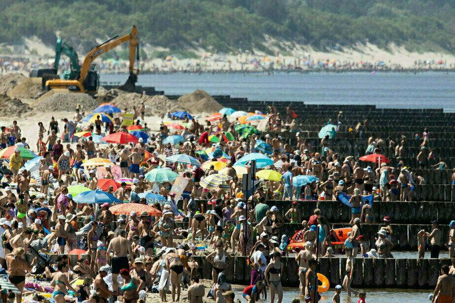 Люди, аттракционы и экскаваторы: что происходит на пляжах в Зеленоградске и Янтарном (фоторепортаж) - Новости Калининграда