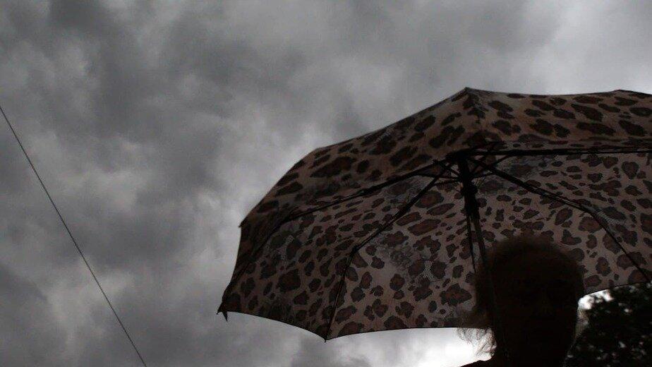 В Калининградской области в пятницу ожидаются гроза и усиление ветра - Новости Калининграда | Фото: архив «Клопс»
