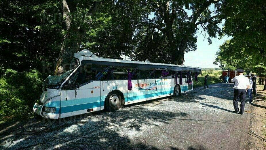 ГЛОНАСС помогла установить скорость автобуса перед аварией под Янтарным  - Новости Калининграда | Фото Александра Подгорчука